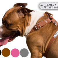 Dog Harness Leather Free PERSONALIZED ID TAG Adjustable for Puppy Small Medium Large Breeds Black Brown Christmas Gift