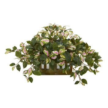 "16"" Hoya Artificial Plant in Decorative Planter"