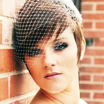 Birdcage Veil, Simple Cage Veil, Ivory, White, Bridal  Veil, Mini Bird Cage Veil, Wedding Veil, Bandeau Birdcage Veil, Russian Veil