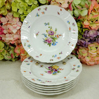 6 Beautiful Meissen Porcelain Rimmed Soup Bowls ~ Dresden Flowers ~ Insects