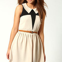 Evelyn Peter Pan Collar Colour Block Skater Dress