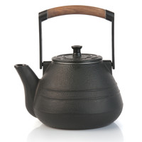 NEO Cast Iron Teapot Medium with Infuser 1.1qt. (1 l)