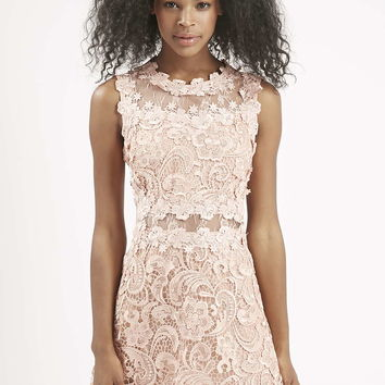 Structured Lace Skater Dress - Topshop