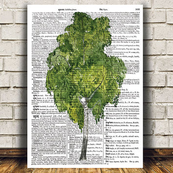 Birch tree poster Watercolor art Dictionary print Tree print RTA1389