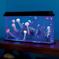 Giant Jellyfish Aquarium with Color-Changing LED Lights