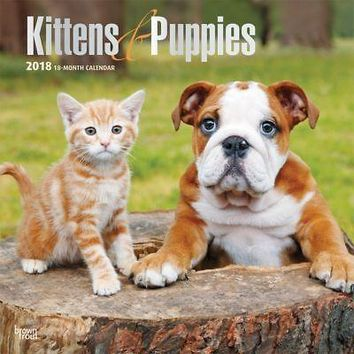 Kittens & Puppies Wall Calendar, More Dogs by BrownTrout