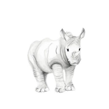 Safari Nursery Art, Rhino, Jungle, Grey and White Nursery, Rhinoceros, Baby Boy Nursery Art, Baby Animal, Pencil Drawing, Sketch, Art Print