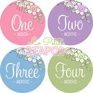 Monthy Baby Shirt Stickers - Pretty Floral Script Design - Pink Blue Purple Green Floral  - Girl Monthly Baby Stickers