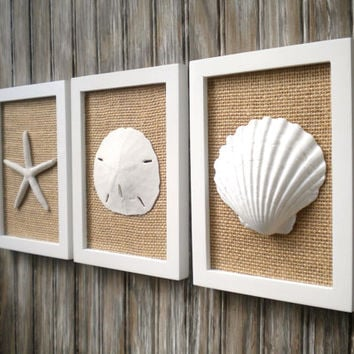 Cottage Chic Set of Beach Wall Art, Sea Shells Home Decor, Beach House Wall