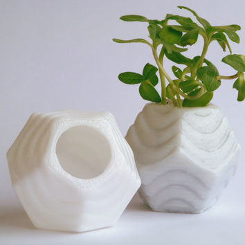 Mini Dodecahedron Planters (set of 2)