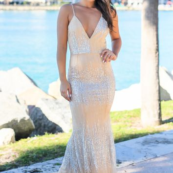 Nude and Silver Maxi Dress