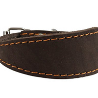 """Brown Real Leather Tapered Dog Collar 1,5"""" Wide, Fits 8.5""""-10.5"""" Neck, Small, Dachshund"""