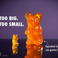Big Gummy Bears: 18 times larger than regular gummy bears (6-pack)