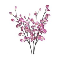 "40"" Orchid Lights w/ 3 Branches - 2Shopper, Inc."