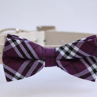 Puprle Dog Bow Tie with high quality white leather collar, wedding dog accessories
