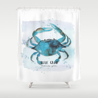 blue crab Shower Curtain by Sylvia Cook Photography