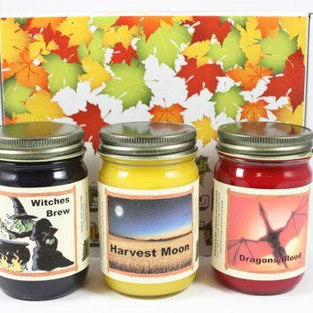 "Fall Scented Halloween Candle Collection, ""Fright Night"", Witches Brew, Harvest Moon, and Dragon Blood Scents, Three 12 Ounce Candles"