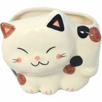 Cute Cat Rest for your Glasses ~ Neco Eyeglass Holder