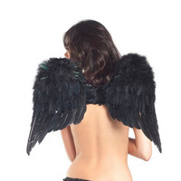 Bewicked Feather Wings  Black