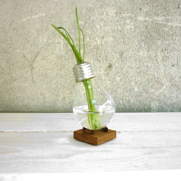 Upcycled lightbulb vase plant holder made of recycled light bulb with wooden stand mens lady christmas gift for home and office by Paladim
