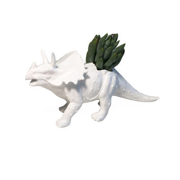 Up-cycled White Triceratops Planter
