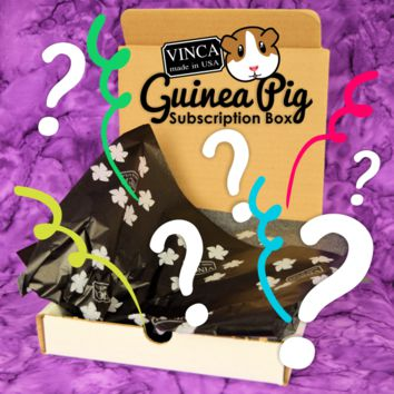 August 2019 Guinea Pig Package