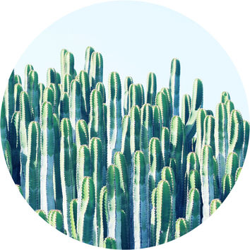 Cactus II Circle Wall Decal