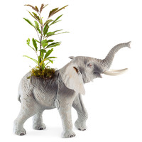 "12"" Elephant in the Room Planter, Live, Outdoor Urns, Planters & Jardinieres"