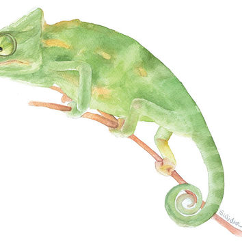 Chameleon Watercolor
