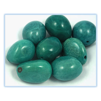 Tagua Nut Beads Turquoise Small Polished Seed Set of 1; craft supplies,  handmade beads, ecofriendly beads, tagua pendant, beading