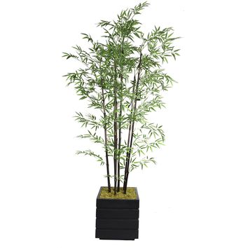 "78"" Tall Black Bamboo Tree in 14"" Planter"