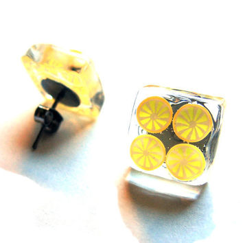 Orange Tangerine Slice Citrus Fruit Stud Earrings by SovereignSea