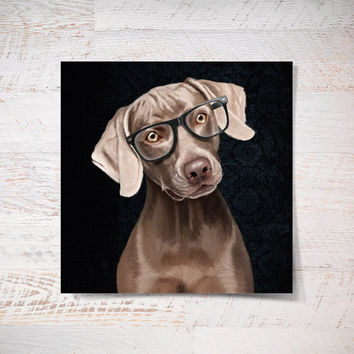 Portrait of elegant Weimaraner with glasses on black background (poster 12x12) Illustration print on photographic paper, dog art, pet, gift