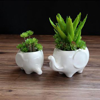 2pcs/set Lovely Elephant White Ceramic Planter for Succulents Decorative Succulents Pot Mini Flower Pot Home Garden Decoration