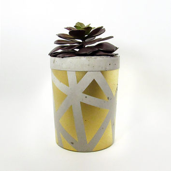 Concrete Planter, Cement Planter, Succulent Planter, Cactus Planter, Geometric Planter, Modern Planter, Succulent Pot, Unique Planter, Gold
