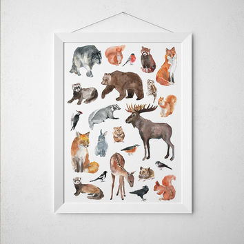 Animal poster Woodland print Nursery art Watercolor print 1ACW11