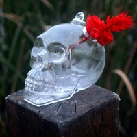 1Pc Plants Garden Flower Pot Skull Shape Hanging Glass Vases Other Yard Outdoor Quality
