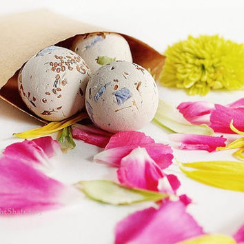 Birthday Party Favors Wildflower Seed Bombs Organic Seeds 24 Garden Seed Balls