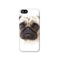 P1852 Pug Dog Case Cover For IPHONE 5C