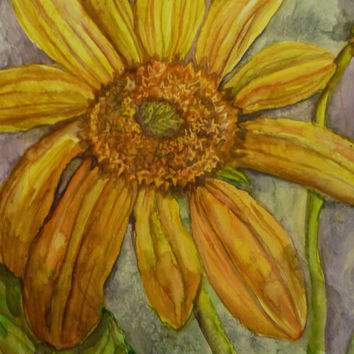 Original Floral Watercolor, Yellow Floral Watercolor, Mule Ear Blossoms, Original Floral Art, Western Art