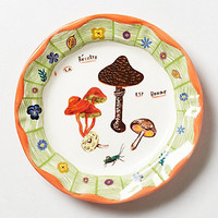 Mushrooms Plate