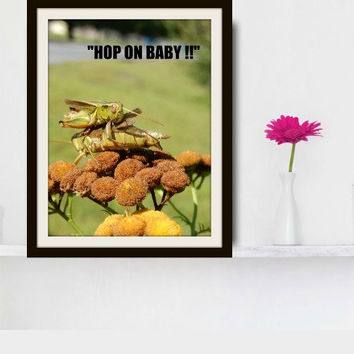 Grasshopper photograph with fun quote.  Hop On Baby. Insects. Bugs. Creepy crawlies. Nature. Kid's room. Green wall decor by Key2MyArt.