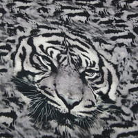 Tiger Stripes Patterned Infinity Scarf in Grey Black Neutral Color, Animal Print Fashion Light Weight Loop Circle Eternity1520 Scarf