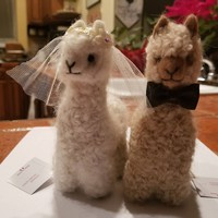 Bride and Groom Alpacadorable Hand Made Baby Alpaca Ornaments Alpaca Wedding Cake Topper