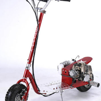 49cc Dirt Dog Gas Scooter with Rear Foot Pegs