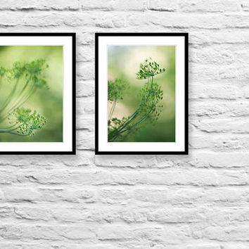 Nature photography monochromatic photography green fennel botanical fine art print kitchen art wall decor kitchen decor photo print diptych