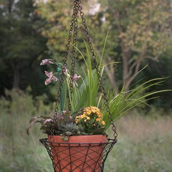 Round Hanging Wire Basket with Terra Cotta Pot - Green/Rust