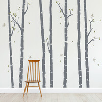 Birch Trees Forest Wall Decal