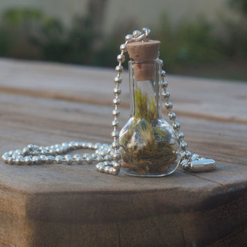 Twig and Moss Necklace, Glass Bottle Charm Necklace, Eco Friendly, Terrarium Jewelry, Living Plant Jewelry, Twig Jewelry