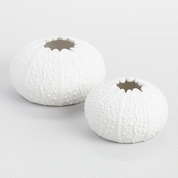 White Sea Urchin Decor